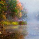 Shoreline by KathleenRinker