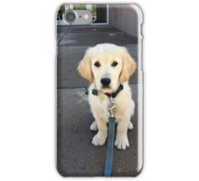 A Little Pup iPhone Case/Skin