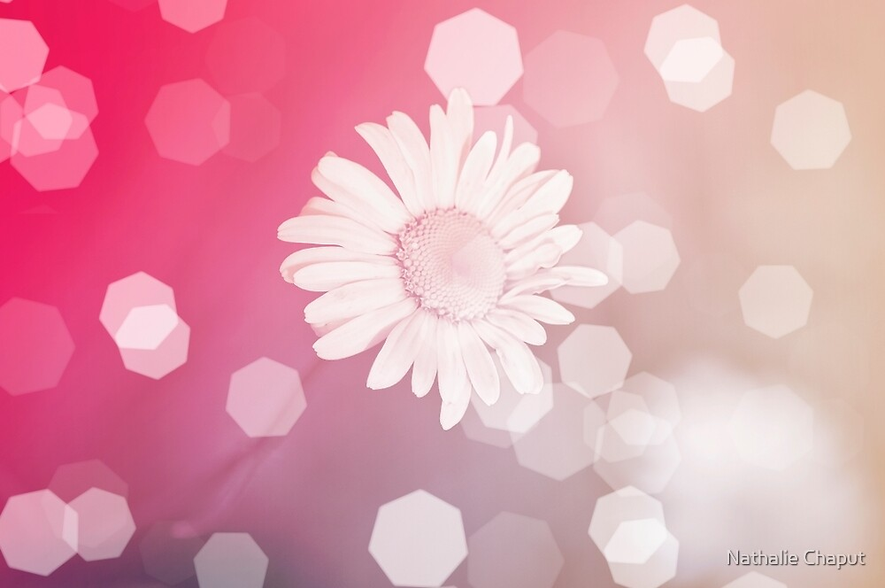 Pretty in pink by Nathalie Chaput