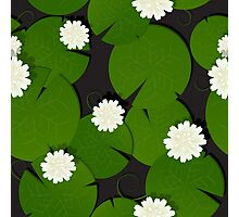 Background with watter lillies pattern Photographic Print