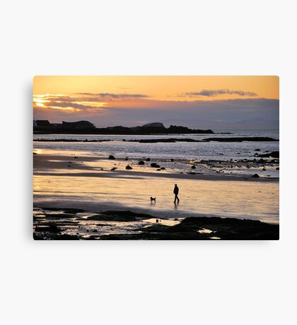 Last Walk Of The Day. Canvas Print