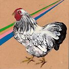 chicken by NancyBenton