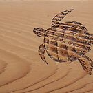 Pyrography: Swimming Turtle by aussiebushstick