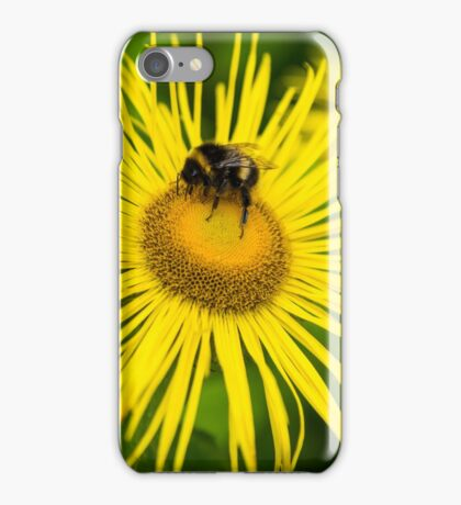 Solo Bee iPhone Case/Skin