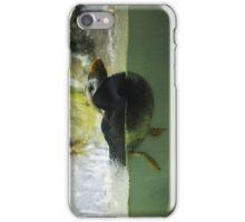 Puffin. iPhone Case/Skin