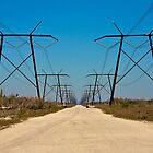 Powerlines on the Fringe by Bill Wetmore