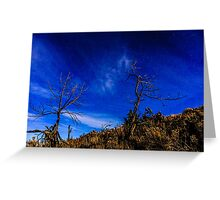 Sunset#10/Redmond Greeting Card