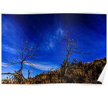 Sunset#10/Redmond Poster