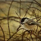 My Little Chicadee by Victoria Jostes