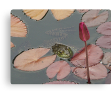 Frog Lily Canvas Print