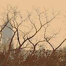 belfry through branches by Nikolay Semyonov