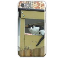 Surveying the Surrounds iPhone Case/Skin