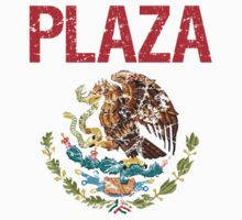 Plaza Surname Mexican by surnames