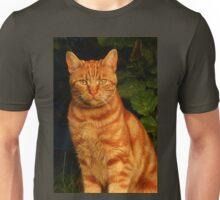 A Fiend in Feline Shape - Macavity Unisex T-Shirt