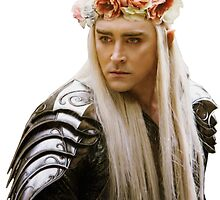 Flower Crown Thranduil by casscain
