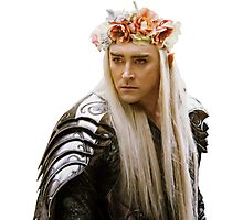 Flower Crown Thranduil Photographic Print