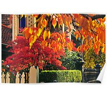 Autumn comes to the suburbs Poster
