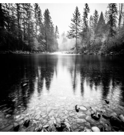 Forest Reflection Lake - Black and White Nature Water Reflection Sticker