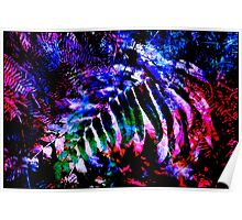 Wentworth Falls Palm Leaves Poster