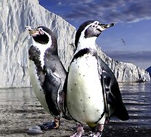 Penguins and Glacier by Erika Kaisersot