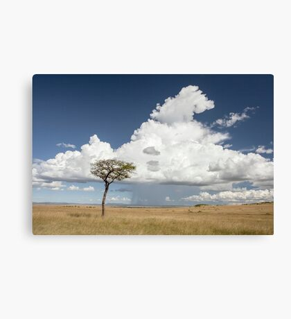 Mara Plains Canvas Print