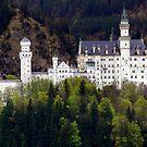 Neuschwanstein Castle by annalisa bianchetti