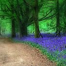 My Blue Heaven by naturelover