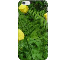 NATURE 16 iPhone Case/Skin