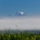 Over the fog by Frank Olsen