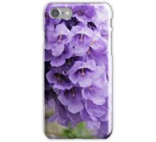 Jacaranda Tree Flowers iPhone Case/Skin