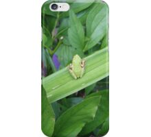 Green Friend iPhone Case/Skin