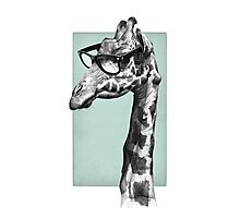Short-Sighted Giraffe Photographic Print