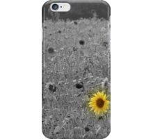 last sunflower standing iPhone Case/Skin