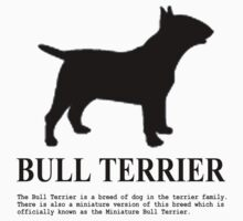Bull Terrier by benyuenkk