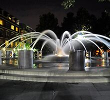 Charleston SC Fountain at night at the Water Front Park by imagetj