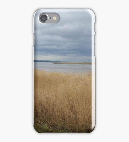 Beautiful Scenario iPhone Case/Skin