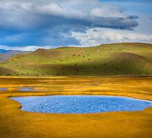 Patagonian Lakes by Dave Hare