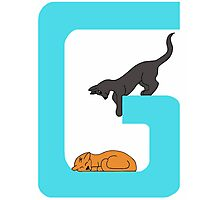 Cat Alphabet Letter G Photographic Print