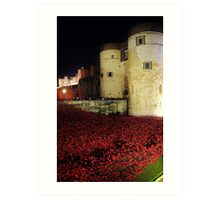 Poppies at the Tower of London - Night #3 Art Print
