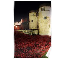 Poppies at the Tower of London - Night #3 Poster