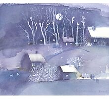 Winter village at night Photographic Print