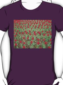 Lots of Red Tulips T-Shirt