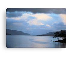 Loch Rannoch Trees  Canvas Print