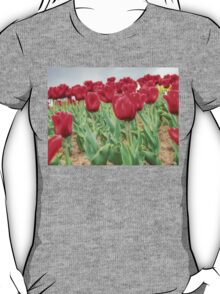 Lots of Red Tulips 3 T-Shirt