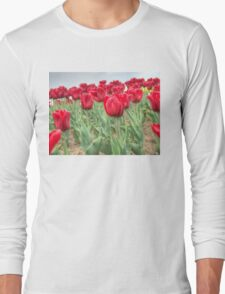 Lots of Red Tulips 3 Long Sleeve T-Shirt