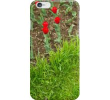 Red Tulips and Green Grass iPhone Case/Skin