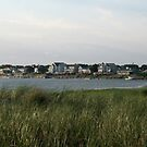 Houses on the beach Newport RI by Ilan Cohen