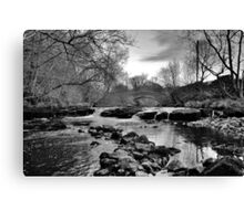The View from the Middle Canvas Print