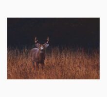 In Autumns Fields - White-tailed deer T-Shirt
