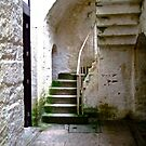 Servants' Stairs, Castle Coole, Fermanagh, Northern Ireland by Shulie1
